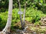 Parking Niue style